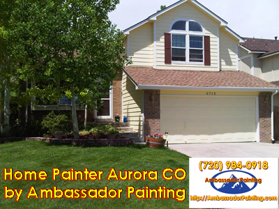 Home Painter Aurora